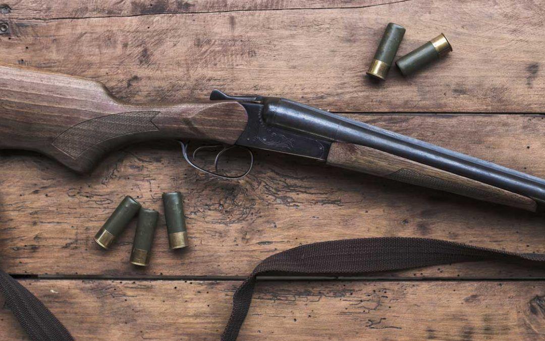 Distancia de uso de escopeta (parte I): Municiones
